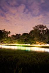 Munro Lights - Longwood 4