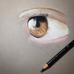 Another eye drawing in progress (start)