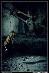 Teddy bear by janowski