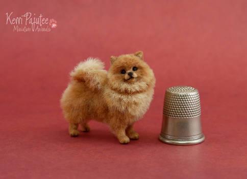 Miniature Red Pomeranian sculpture 2012