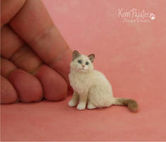 Ragdoll Kitten Scuplture 1:9 scale by Pajutee