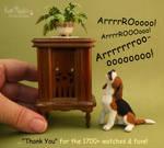 Arrrrooo! Thank you