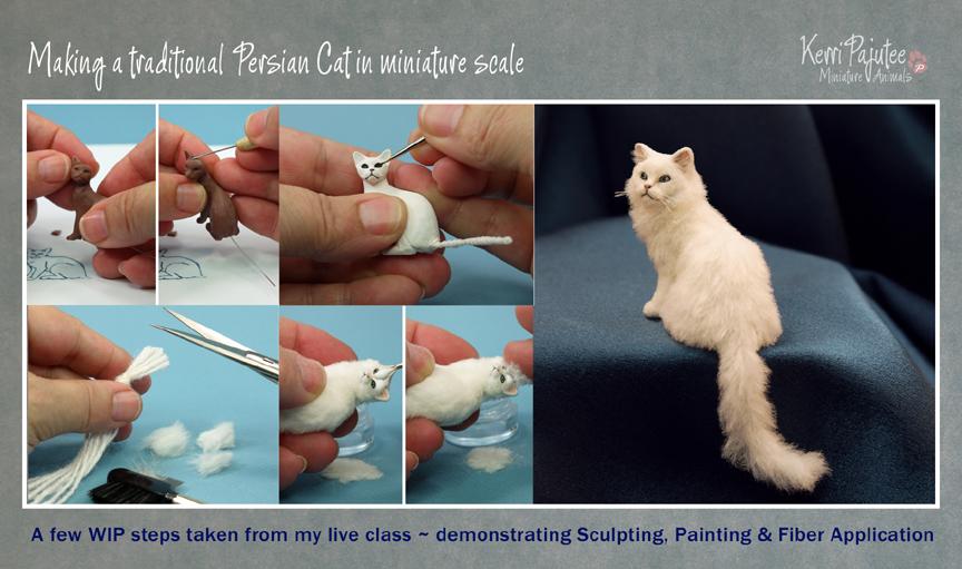 WIP Miniature Persian Cat