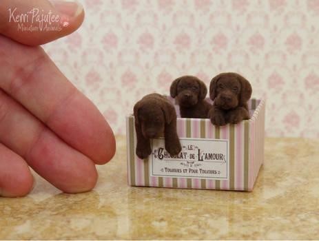 Box of Chocolate Lab Pups sculpture