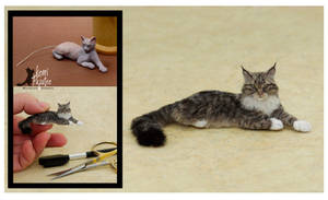 Miniature Maine Coon Sculpt - Before and After