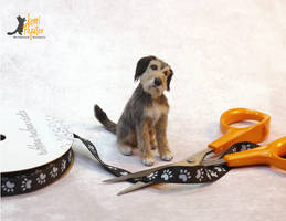 Rags, a miniature mixed breed dog sculpture