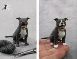 Miniature Pit Bull sculpture by Pajutee