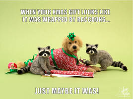 Dollhouse Miniature Raccoons and Dog Sculptures by Pajutee