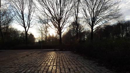 Burgemeester Godwaldt Park 2 (NL)(20161208 152347)