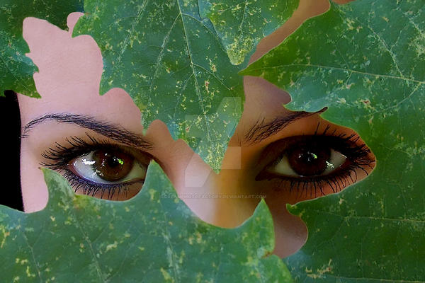 Forest eyes by DreamPhotoFactory