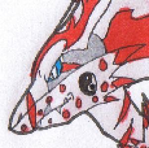 PokemonOR's Profile Picture