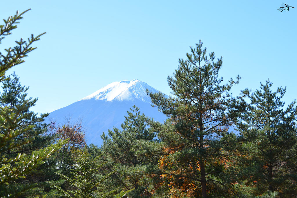 fuji mountain by xuae