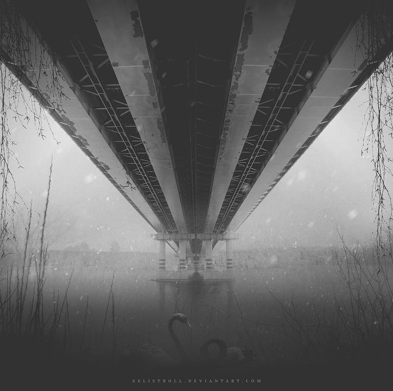 Swans by Xelistroll