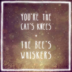 Cats and Bees