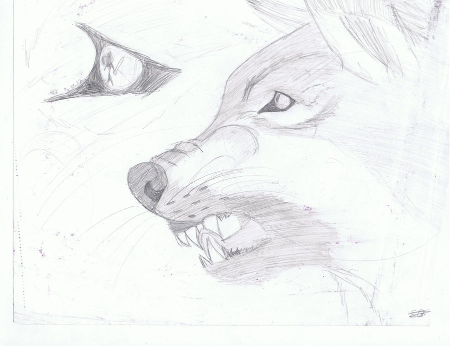 How to draw angry wolf