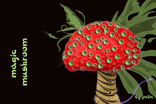 magic mushroom by dingy