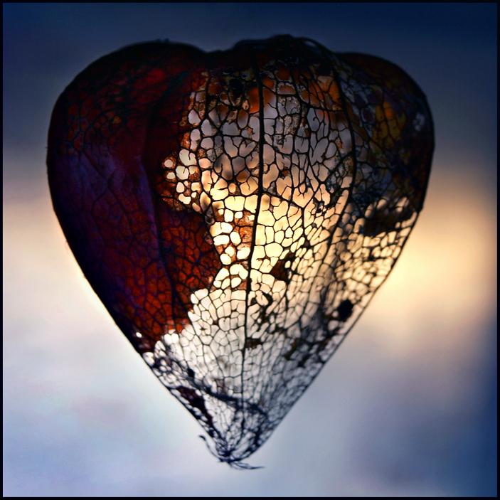 Light In Empty Heart by Astranat