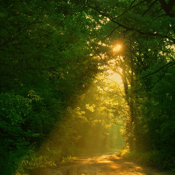 On My Way by Astranat