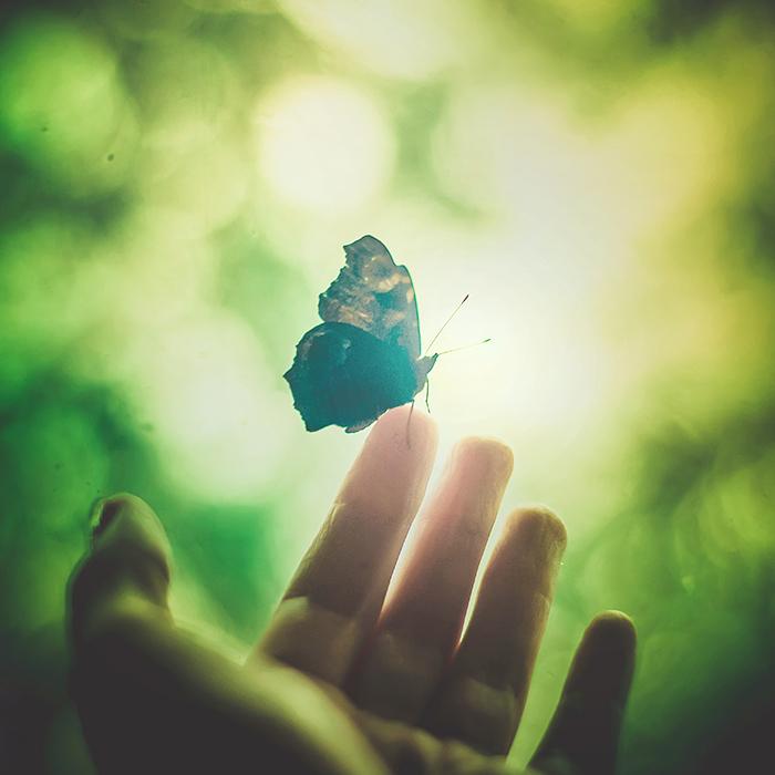 The Inviting Light by Astranat