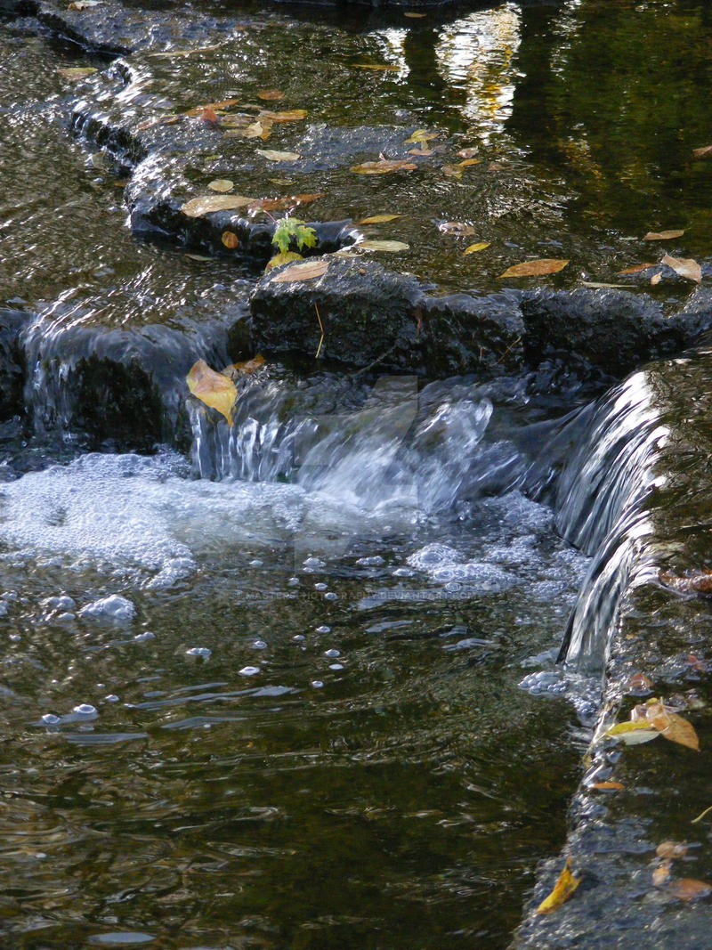 At the Rivers Edge by mastersphotography