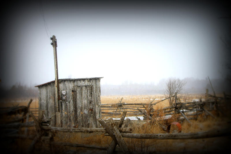 Love Shack by mastersphotography