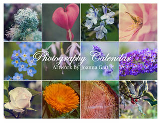 Photography Calendar by joannastar