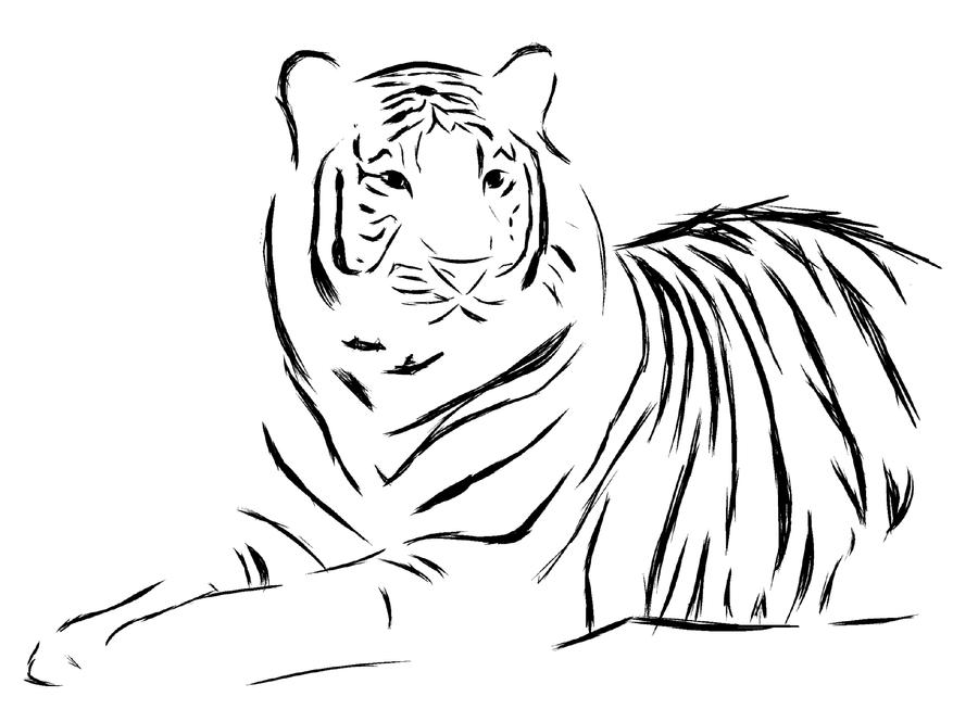 Line Art Tiger : Tiger tattoo design by seranatis on deviantart
