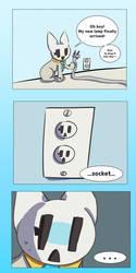 Socket vs socket