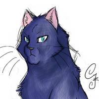 Wild Cat by CYcat