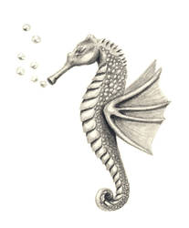 Seahorse by Aissyla