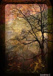 Paysage souvenu / Remembered landscape by Zandrine-C