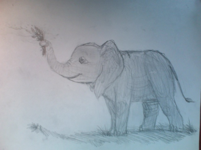Elephant Drawing Images Happy Elephant Drawing Happy
