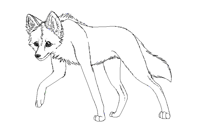 How To Draw A Maned Wolf: Maned Wolf By Ty-DySplat On DeviantArt