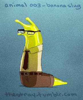 Daily Critter 003 of 365 Banana slug