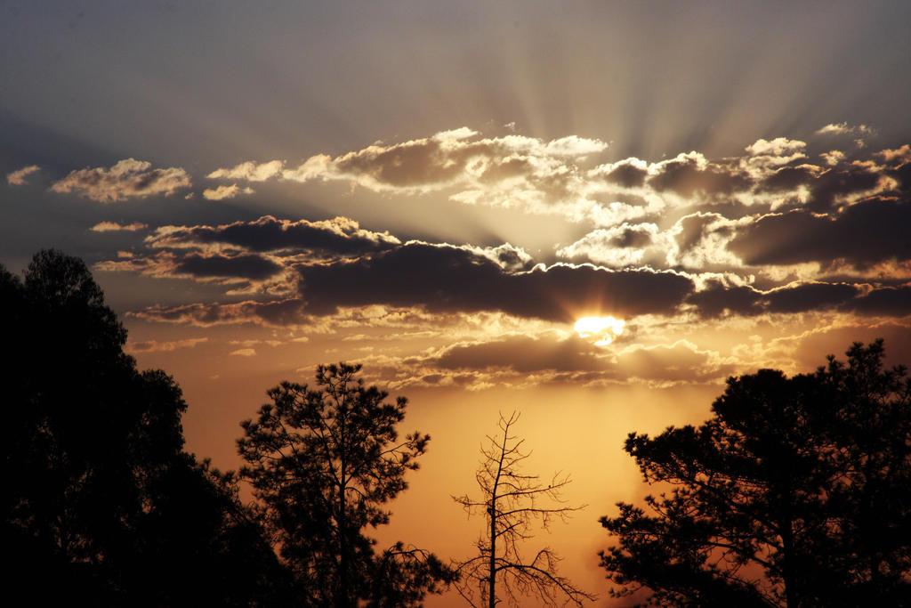 Sunset in Vinhedo by f-barros