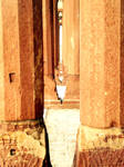 Mughal Depth Pillars by AssamART