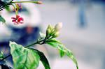 SmellY Flower by AssamART