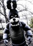Meeting with Bonnie the bunny by BoySputnik
