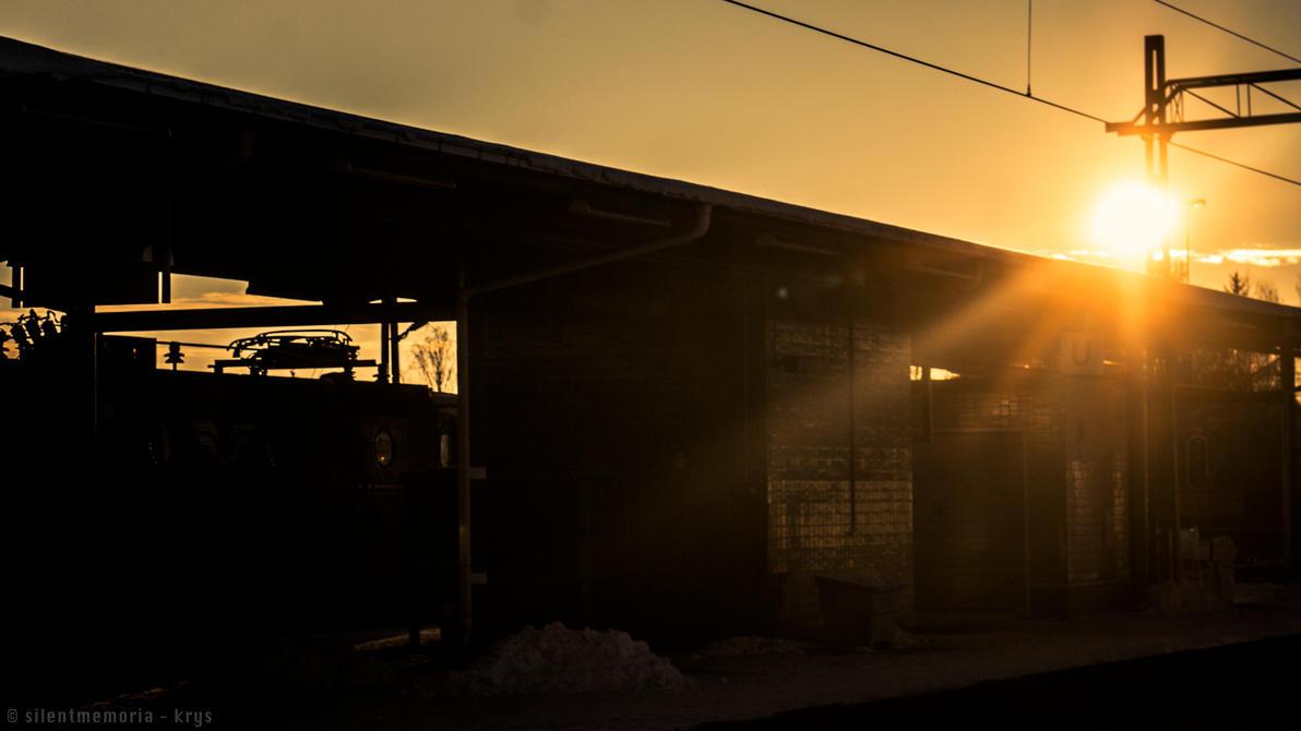 Sunshine's Bright eye by silentmemoria