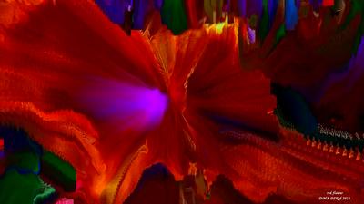 Red  Flower by DJKpf
