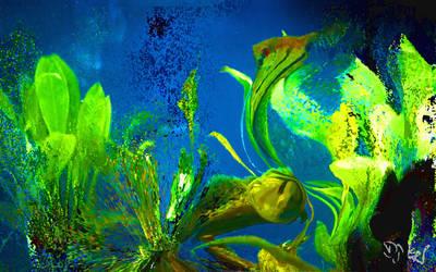 Underwater World by DJKpf