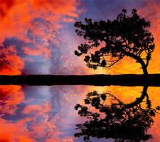 Reflect by Autumniece