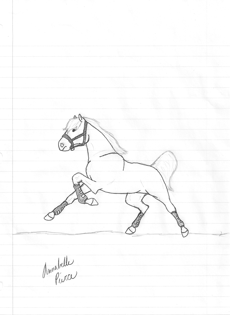 Running horse drawing easy - photo#9