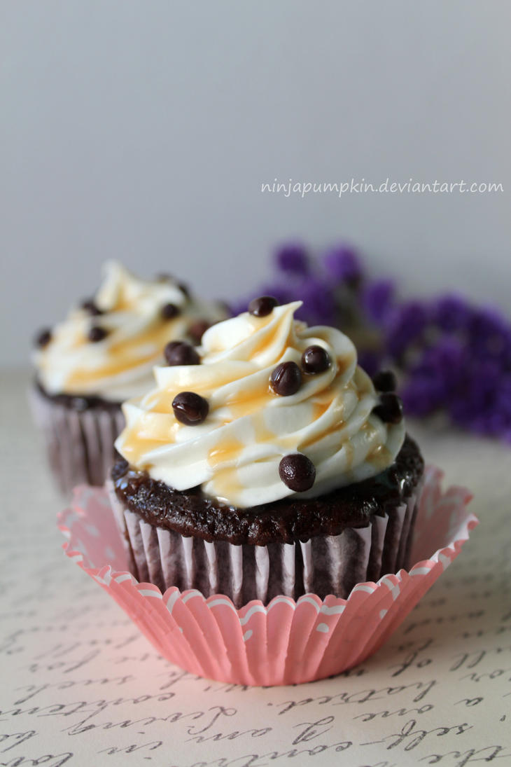 chocolate cupcakes by ninjapumpkin