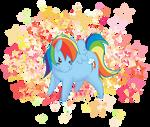 Chibi RainbowDash