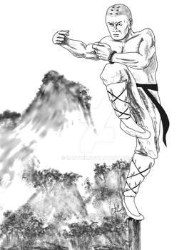 Monk Fighting