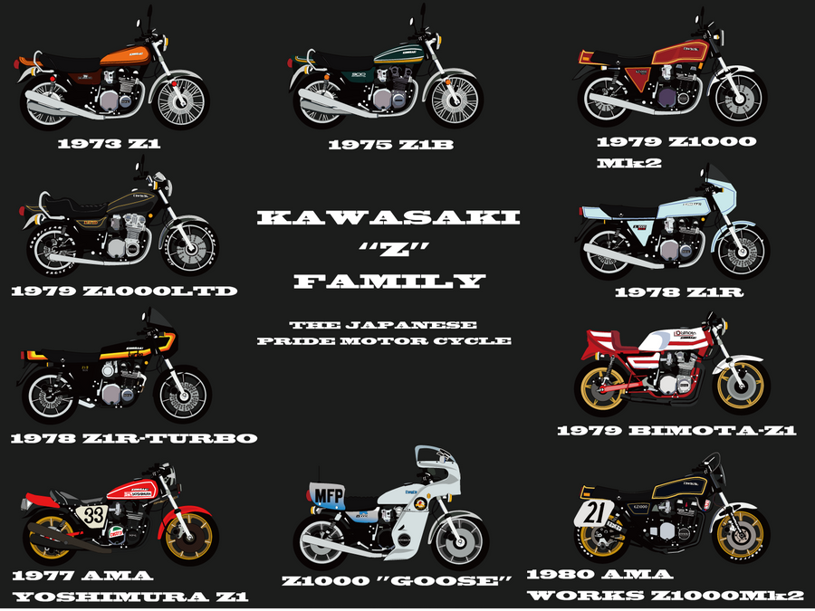Kawasaki Z Family Motorcycle