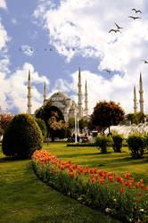 Blue Mosque in istanbul by idilsalihakuntuz