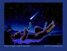 Looking to a shootingstar by KuschelGarou