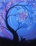 Night Blossoms